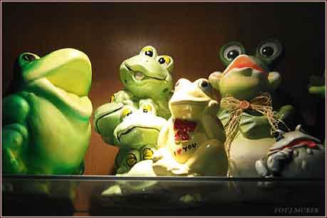 Muzeum žabiček